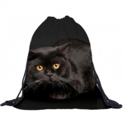 Рюкзак-мешок с котом